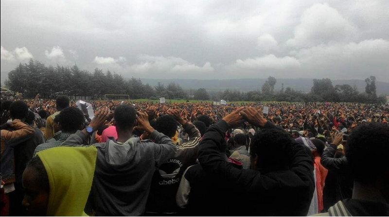 Large numbers gather in Holota as part of the Oromo protests. Credit: abenezer_a.