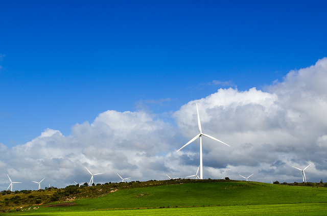 Windmills in the Western Cape, South Africa. Credit: jbdodane.