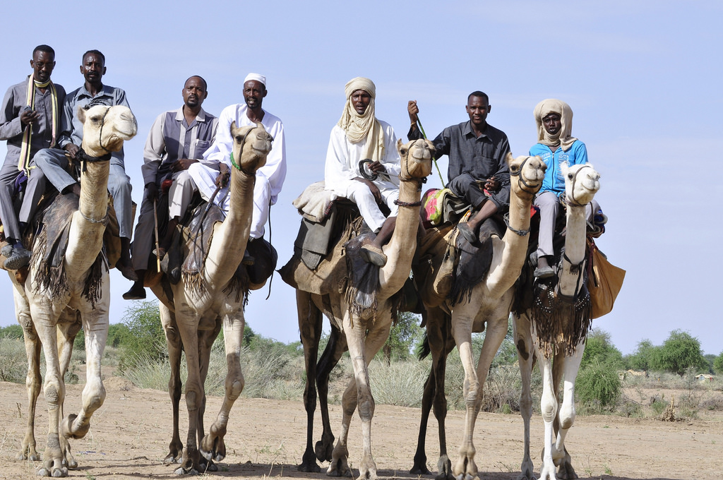 A group of Darfuris prepare to take part in a camel race. Credit: Amin Ismael. UNAMID.