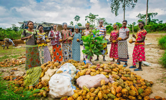 Côte d'Ivoire is the world's largest cocoa producer. Credit: Nestlé.