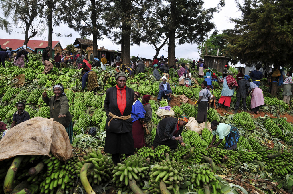 At a banana market in Kenya. Credit: CIAT.