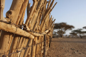 Smuggling networks in east Sudan are flexible and resilient. Credit: SOS Sahel