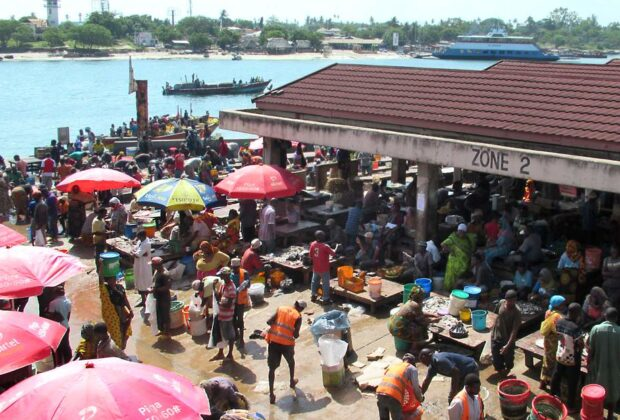 At Mzizima fish market in Dar es Salaam, the heart of Swahili country, Tanzania. Credit: David Stanley.