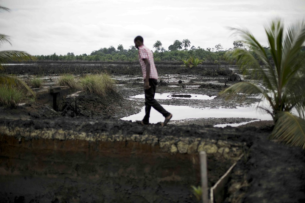Shell. An oil spill in Ogoniland in the Niger Delta, Nigeria. Credit: Luka Tomac/Friends of the Earth International.